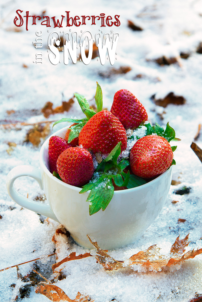 strawberries snow web