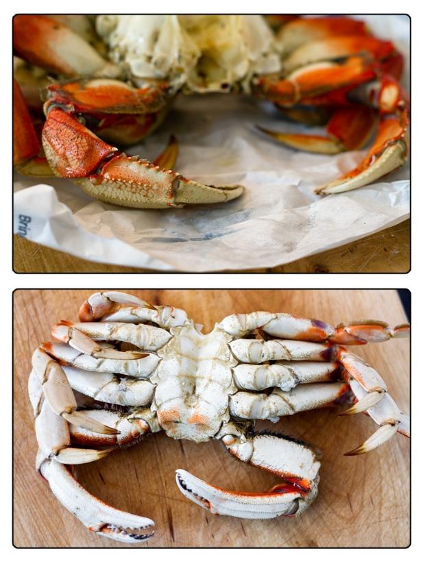 crab cakes 1