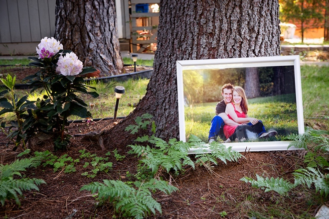 Large Photo in the garden