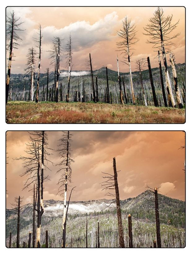 Angora Burn area with smokey clouds.
