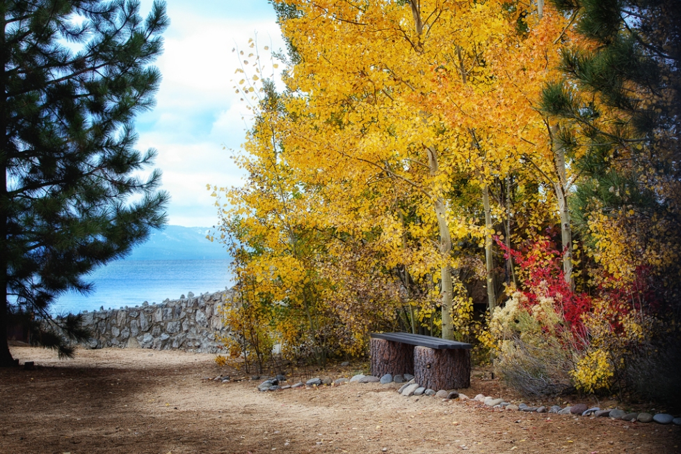 Colorful fall scene on Lake Tahoe