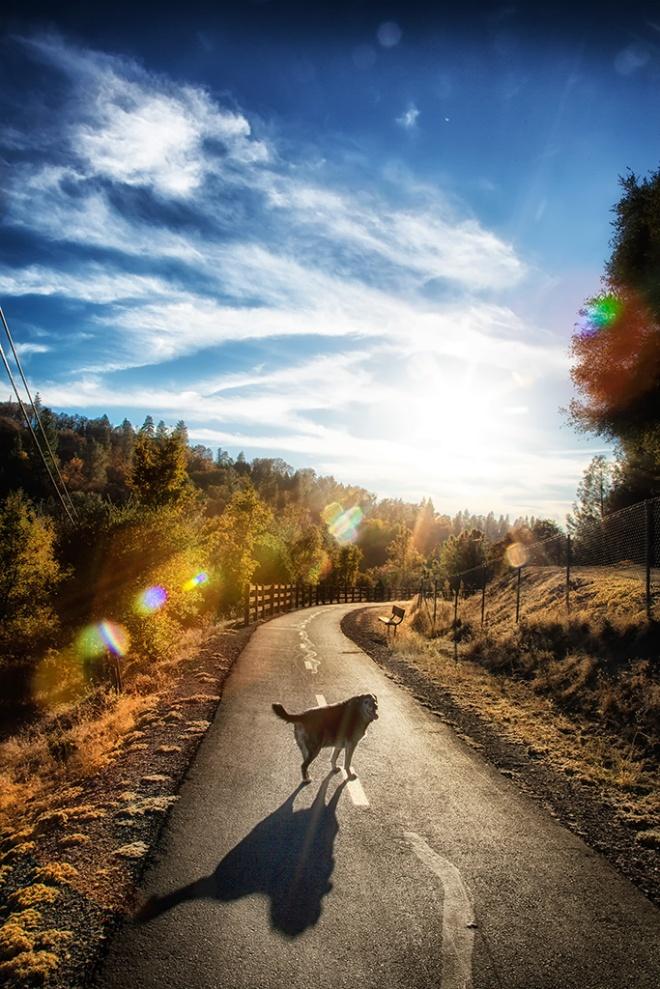 El Dorado Trail, Placerville, CA