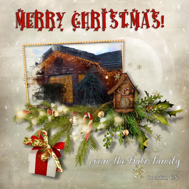 Merry Christmas from the Batz Family
