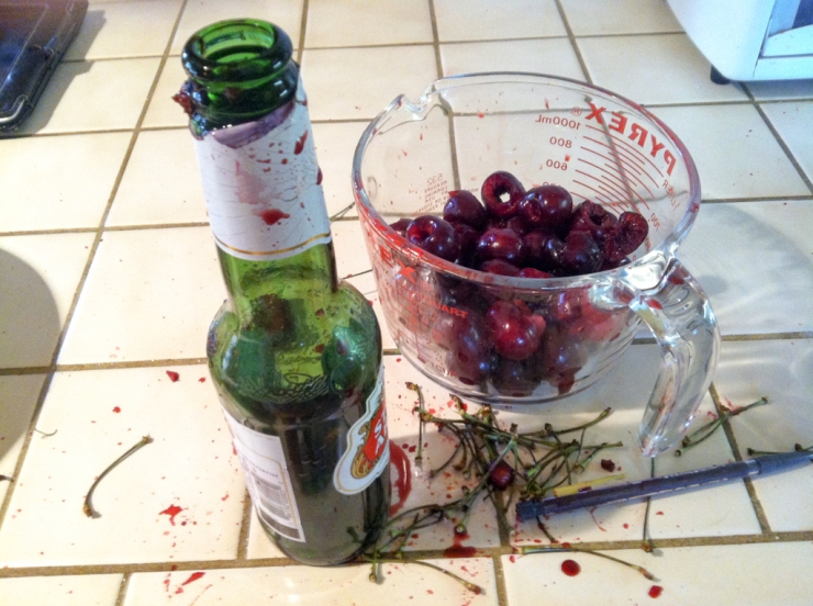 Homemade Cherry Pitter after some use