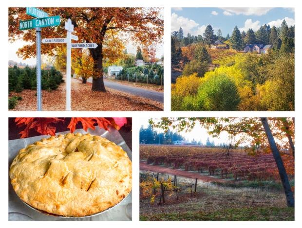 Fall in Apple Hill