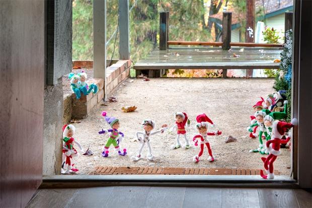 Edmond Elf's relatives return