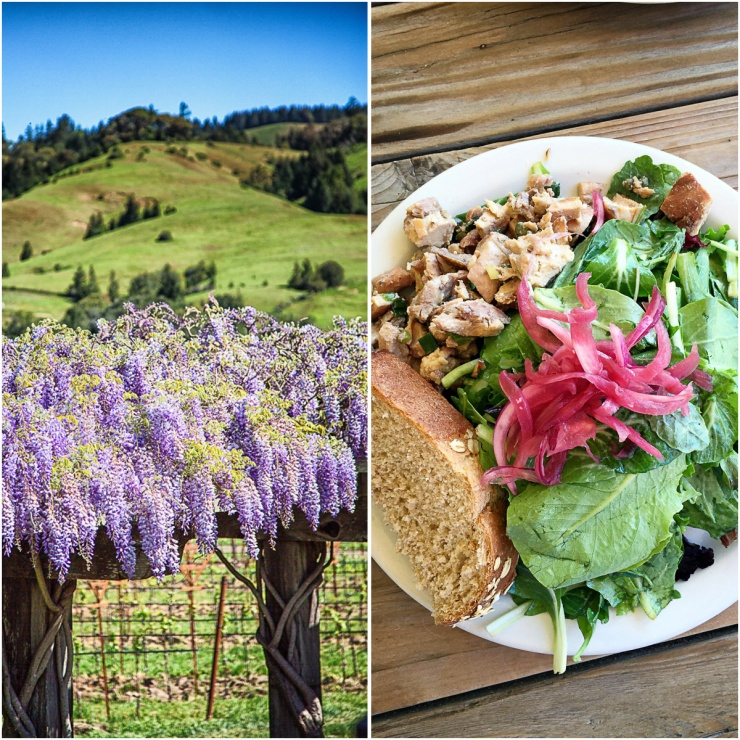 Some of the scenery in Anderson Valley and a great little salad we each had in the small town of Booneville.