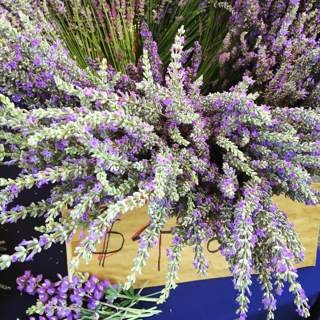 Lavender:  breathe deeply and relax