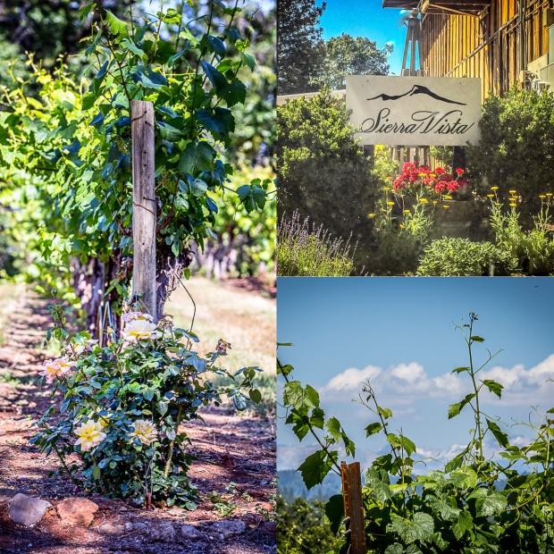 Sierra Vista Winery.
