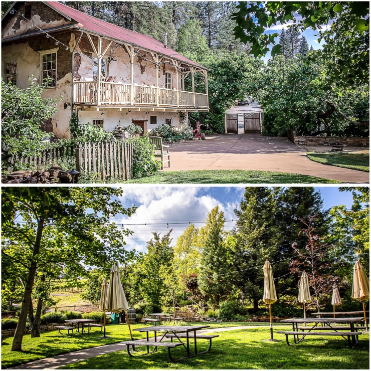 Bodger's original winery (top).  Our view of picnic area (bottom)